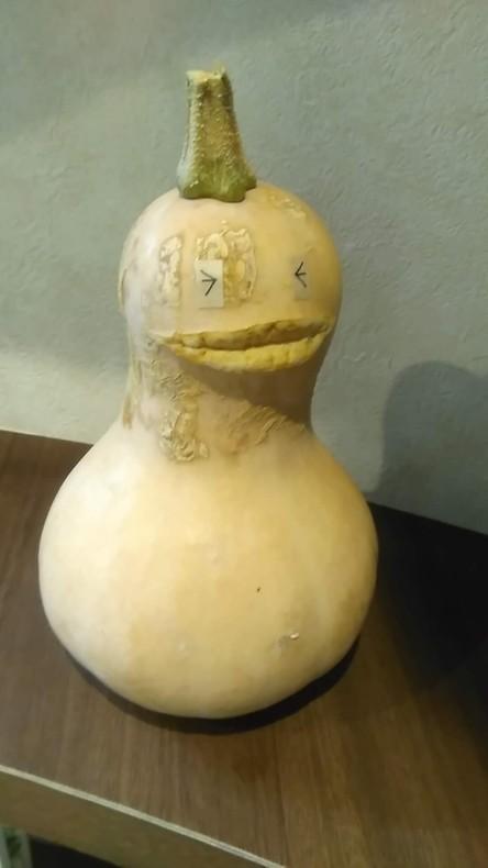 バター川ナッツ太くん